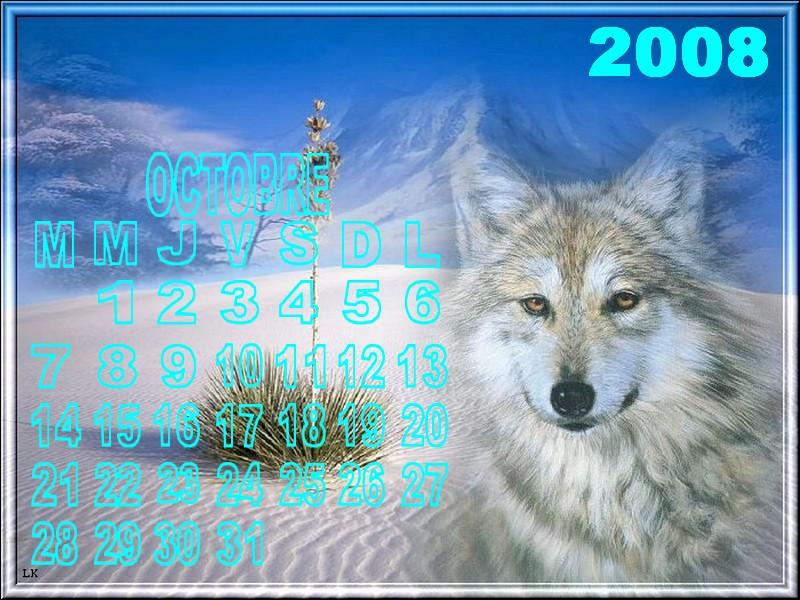 Octobre2008 Arush210