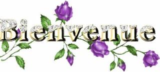 bonjour à toutes et à tous à chacun et chacune Bienve10