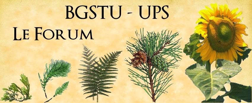 bgstu-ups