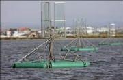 Hydroliennes Oxygénantes à Palavas les Flots 42284010