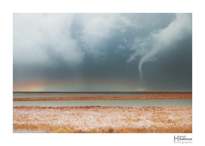 Retrospective, année orageuse 2010... _dsc0210