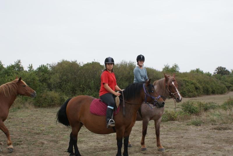 Les chevaux de coeur Dsc00212