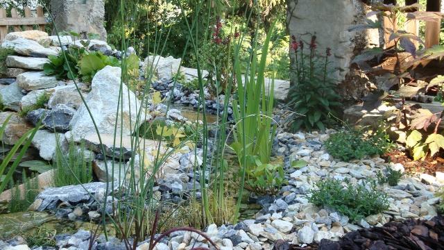 Mon jardin en construction Jardin14