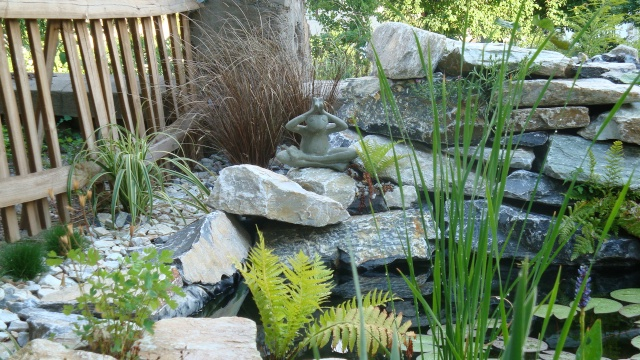 Mon jardin en construction Jardin19