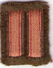 Rango Suboficial de la Legión Cóndor (Barras doradas en vertical). Img05210