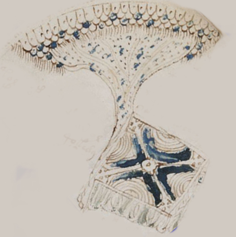 Manuscrit de Voynich F86r5212