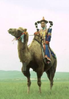 Le Shamanisme en Mongolie Shaman10