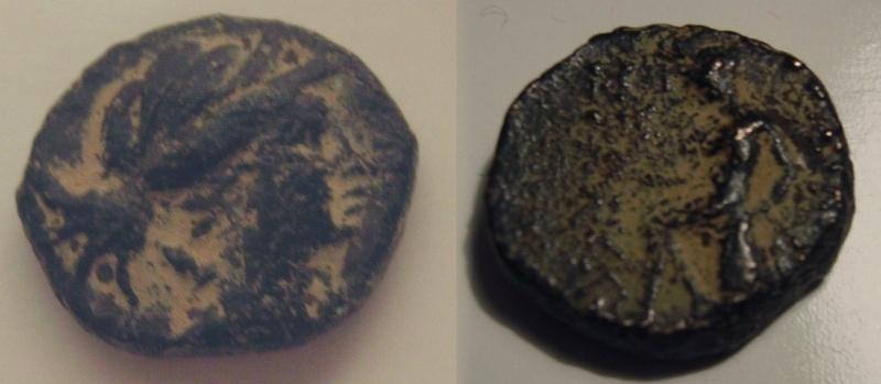 Spécial Lysander N°2 Bronze11