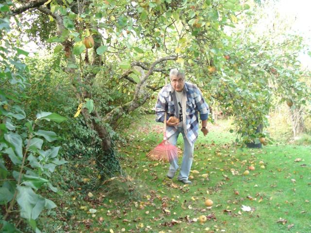 le jardin de Giroflee - Page 6 Jardin17