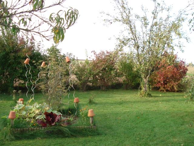 le jardin de Giroflee - Page 6 Jardin25