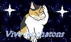 Vive les chatons Bannie10