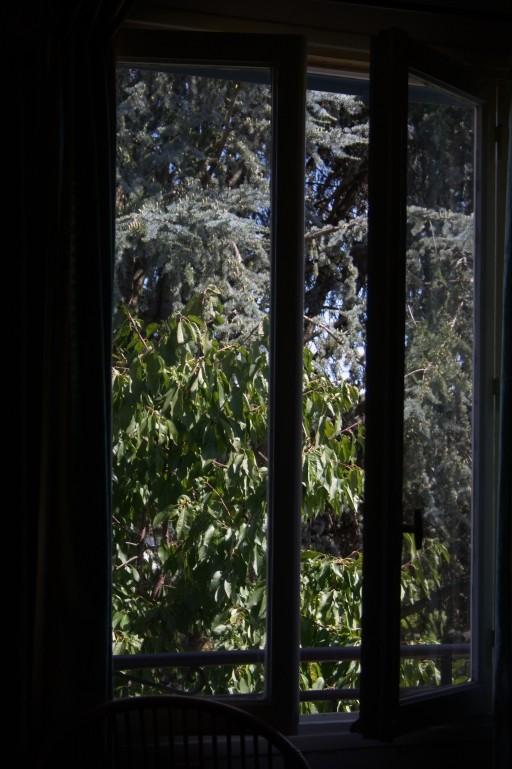 Par la fenêtre Img_7713