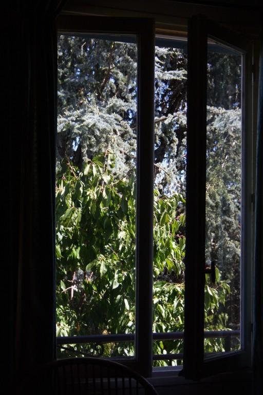 Par la fenêtre Img_7714