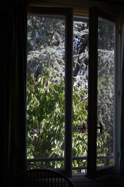 Par la fenêtre Img_7715