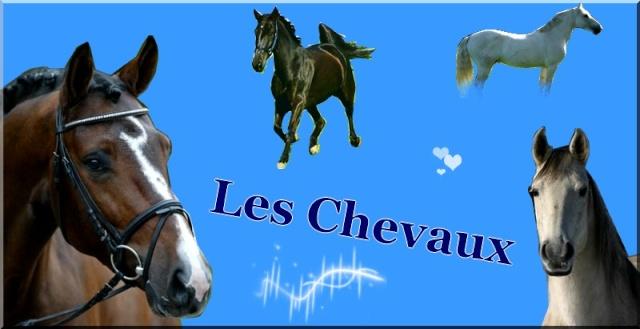 *** Les Chevaux ***