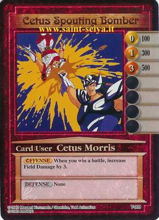 Knights of the Zodiac Cards Ccgt0019