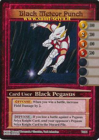Knights of the Zodiac Cards Ccgt0111