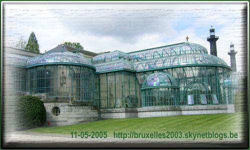 palais belge. 605_3b10