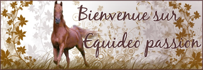 Passion Equideo