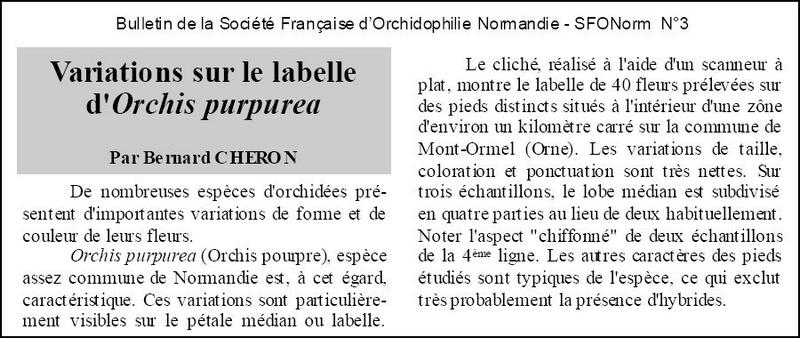 Labelles d'orchis purpurea Copie_72
