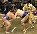 SUMO Japans10