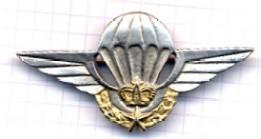 Grades et Insignes de la Gendarmerie Royale Maroc_10