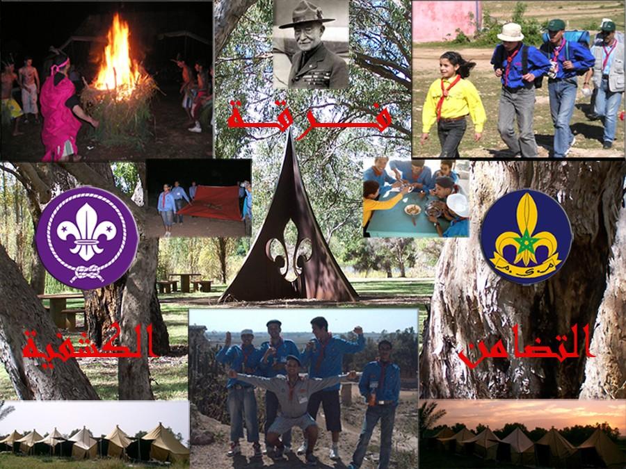 فرقة التضامن الكشفية