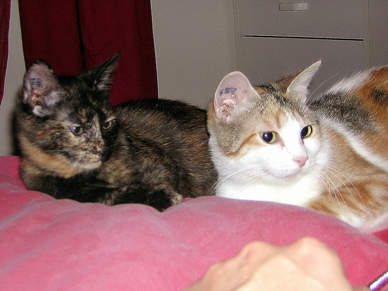 Floria et sa fille Maïlyn Dscn2517