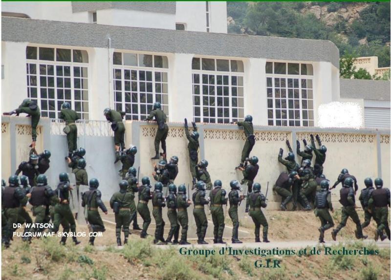 موسوعة الصور الرائعة للقوات الخاصة الجزائرية 34109811