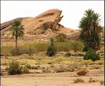 السياحة الجزائرية A1_4610