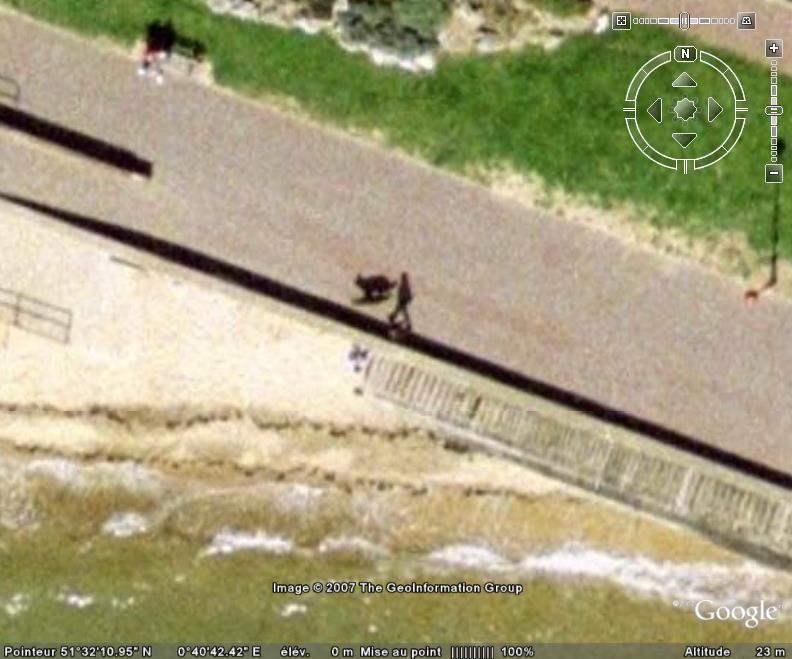 Hommes et leurs chiens, Southend-on-Sea, Essex - Angleterre Chien10