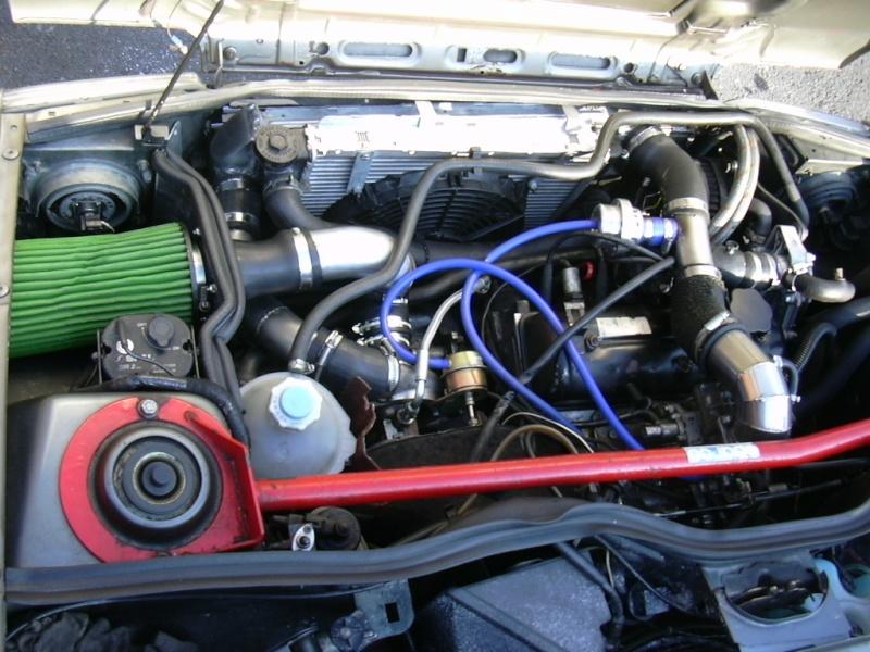 Burtonii sans 5 turbo... Photo_63