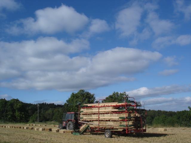 Le temps à Madelonnet du mois de septembre 2007 Nord_o13