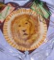 lion Imgp3010