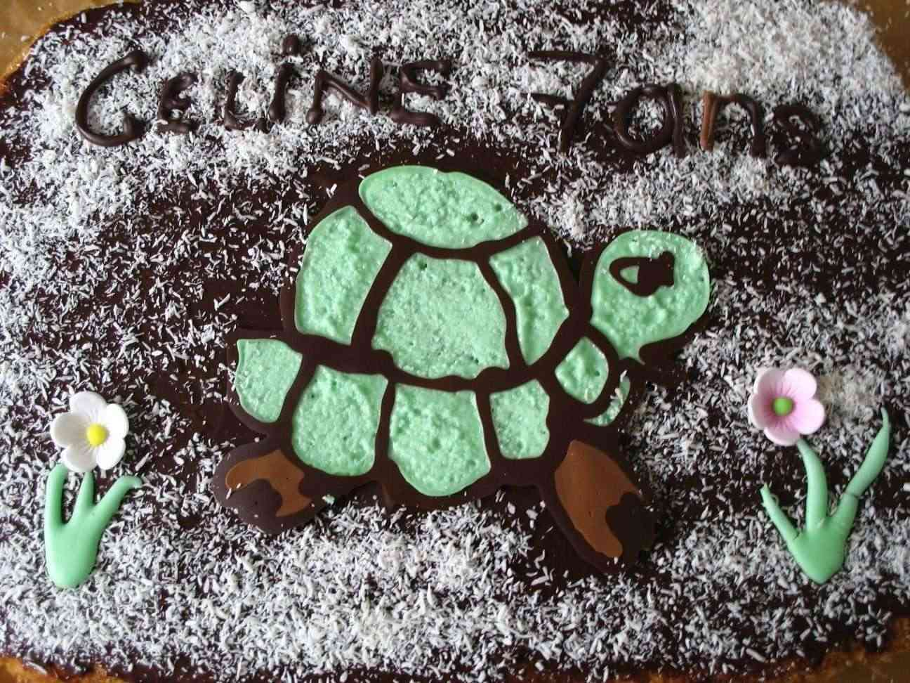 tortue - Page 2 Tortue12