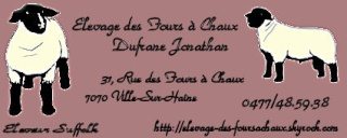 mon avis n'engage que moi Photo_11