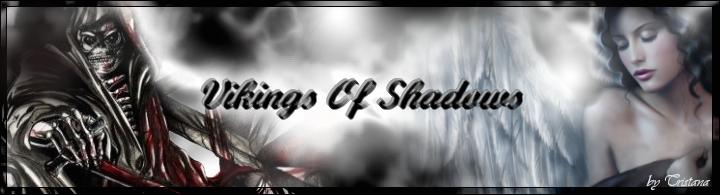 Vikings Of Shadows Banier10