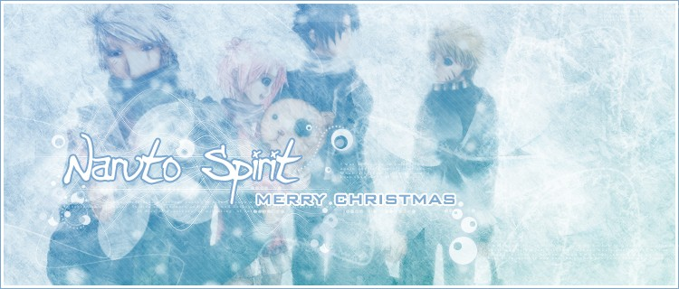 *~¤ Naruto Spirit V.2 ¤~*