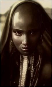 6 - Le Conseil des vampires Massai11