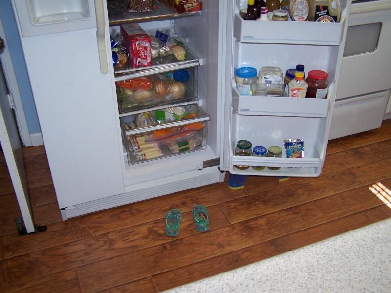 Wonder who left the fridge open? 100_1413