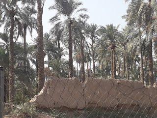 قلعة الشيخ سالم الحمادي الأثرية في الدورة Eeeeee14