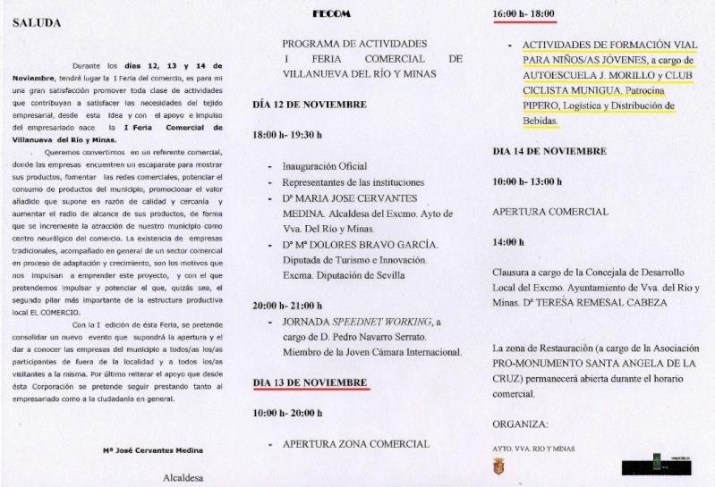 ACTIVIDAD SEGURIDAD VIAL I FERIA COMERCIAL VVA RIO MINAS Sábado 13-11-10 Tripti10