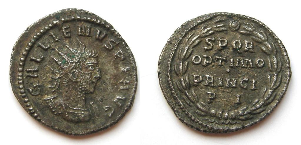 Gallien Dscn3123