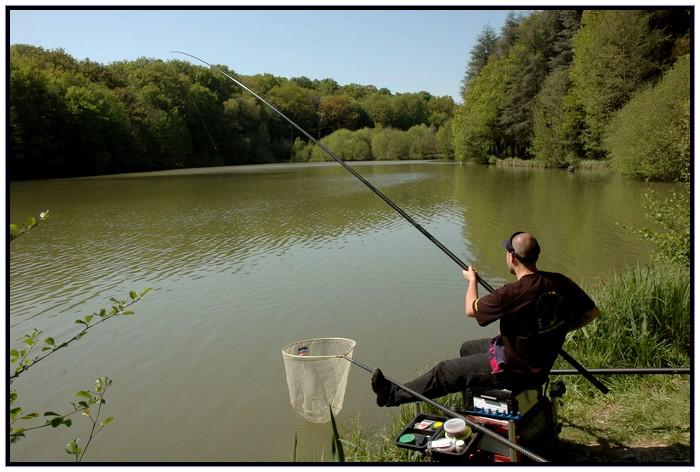 Je pêche la carpe à la baguette. Fab_ap10