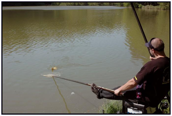 Je pêche la carpe à la baguette. Fab_ap11
