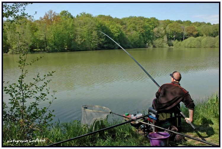 Je pêche la carpe à la baguette. Sortie17