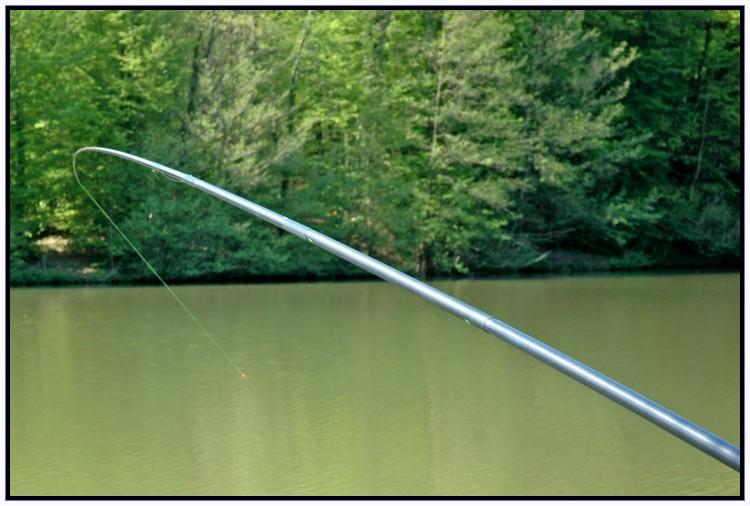 Je pêche la carpe à la baguette. Sortie21