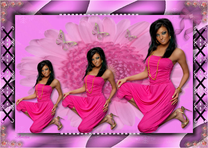 Concours Rose attitude Image210