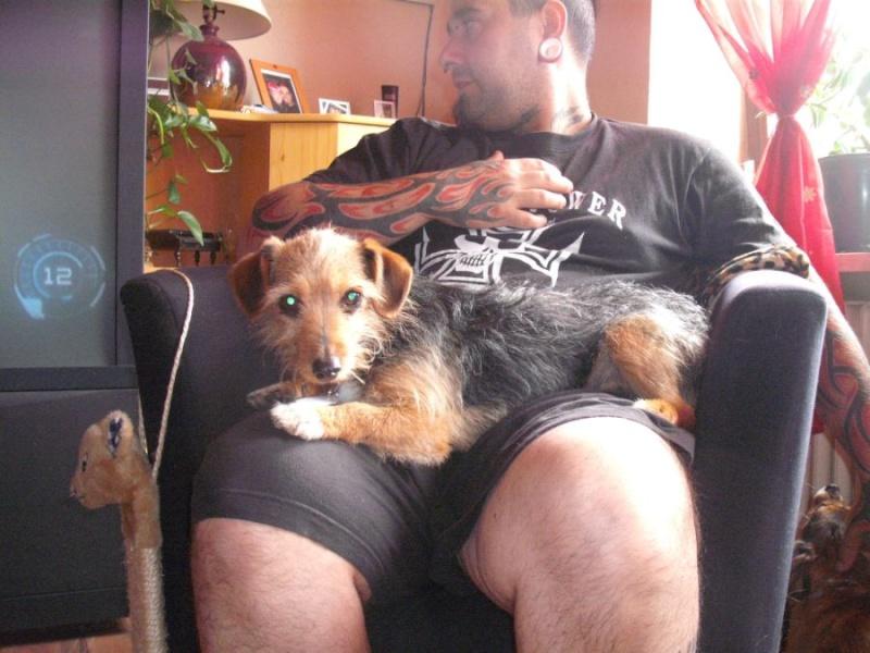 Nouvelles des chiens partis le 25 juin pour l'Allemagne Choups15
