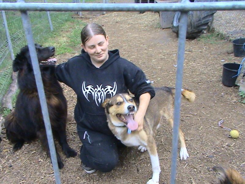 Nouvelles des chiens partis le 13 Mai pour les Pays Bas et l'Allemagne Dsc00111